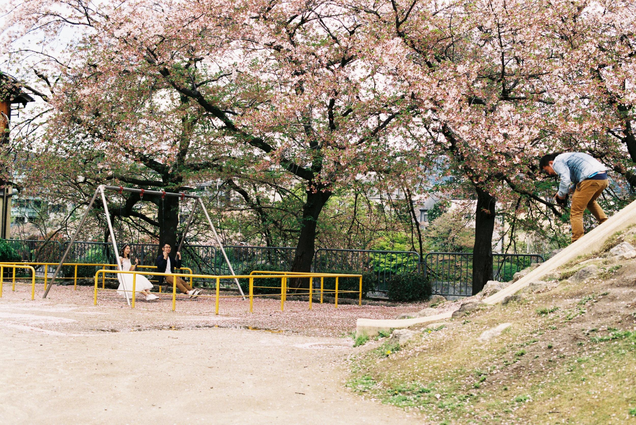 japan-16.jpg