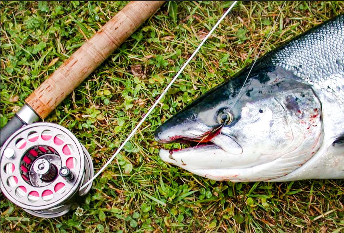 Fiske & Båt - I Vik er det mangfald av aktiviteter, både til lands og til vanns. Er du glad i å fiske i elv eller vann så kan du gjere begge deler i Vik.Les mer om fiske i Vikja (elva) og i fjorden