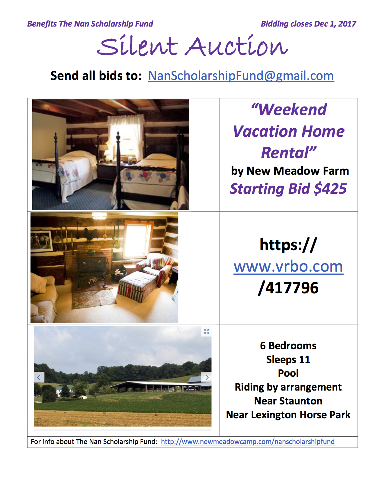 Silent Auction_Vacation Rental By Owner copy.jpg