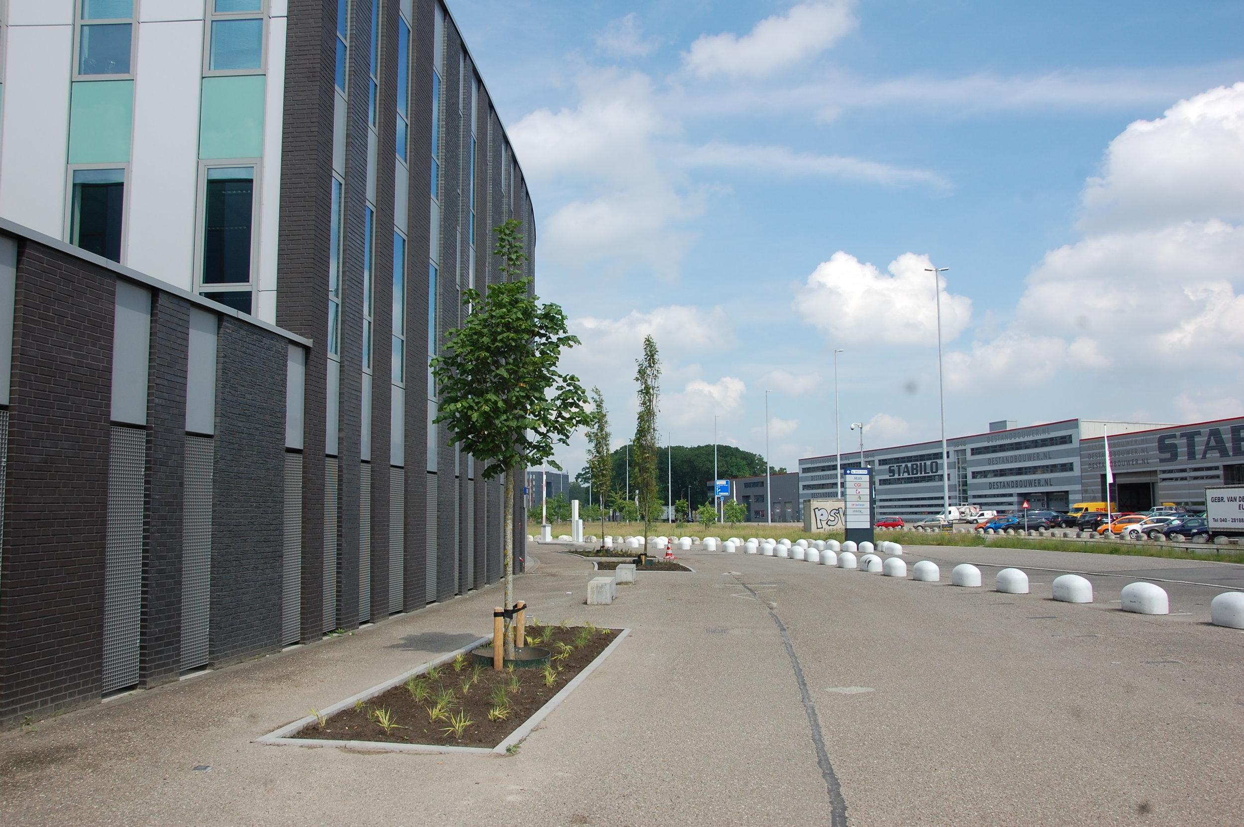 Bomen rondom gebouw