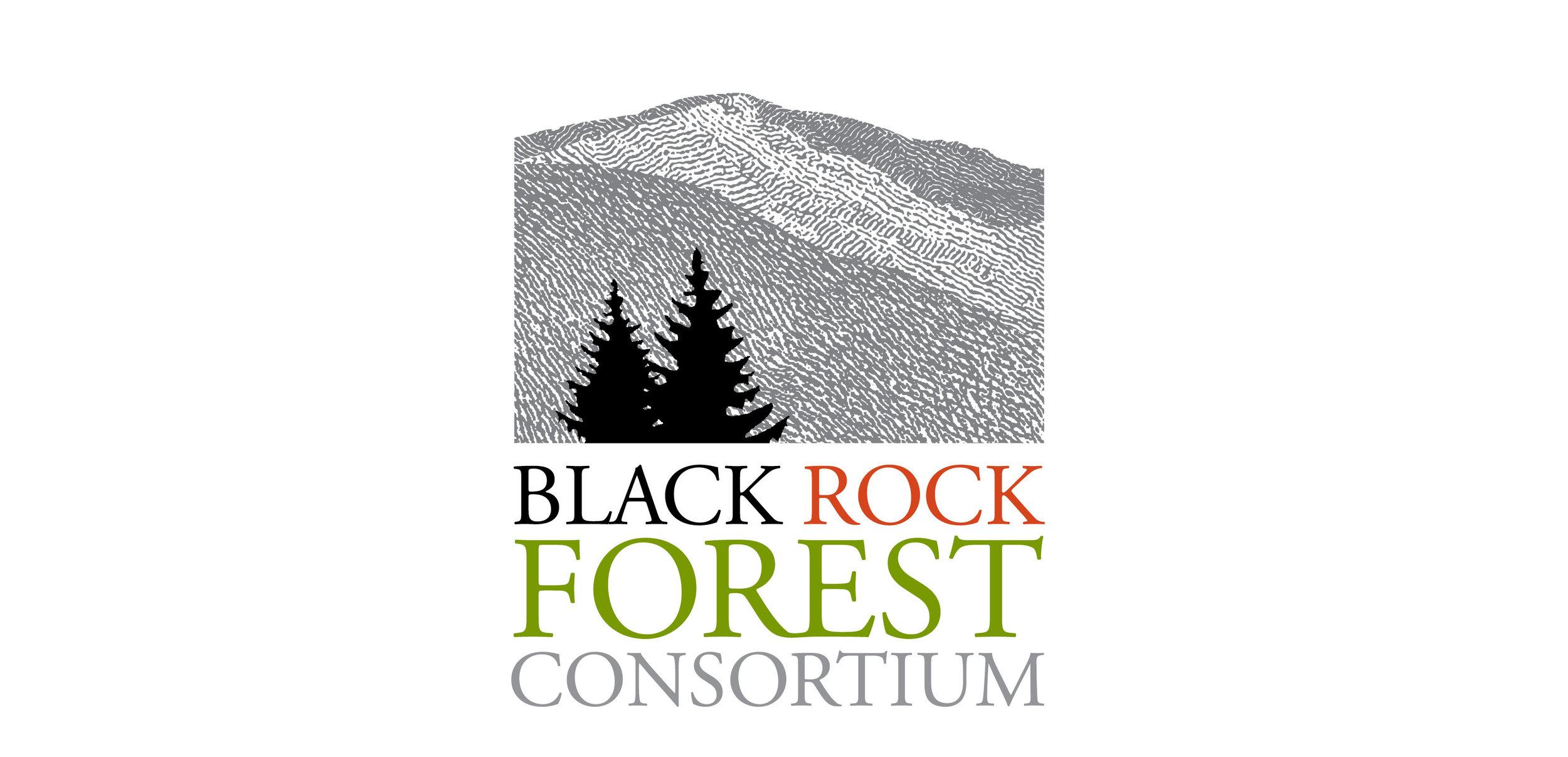 Black Rock Forest