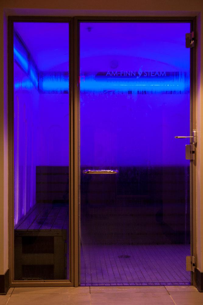 advanced-hybrid-steam-room-door.jpg