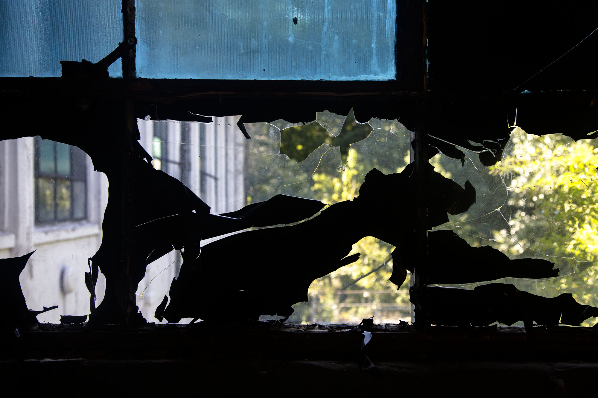 Habersham Corner cracked window-2.jpg