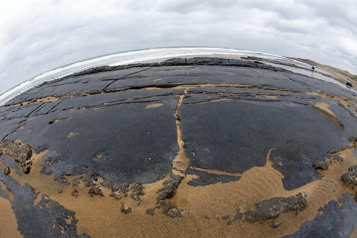 Fish eye_beach.jpg