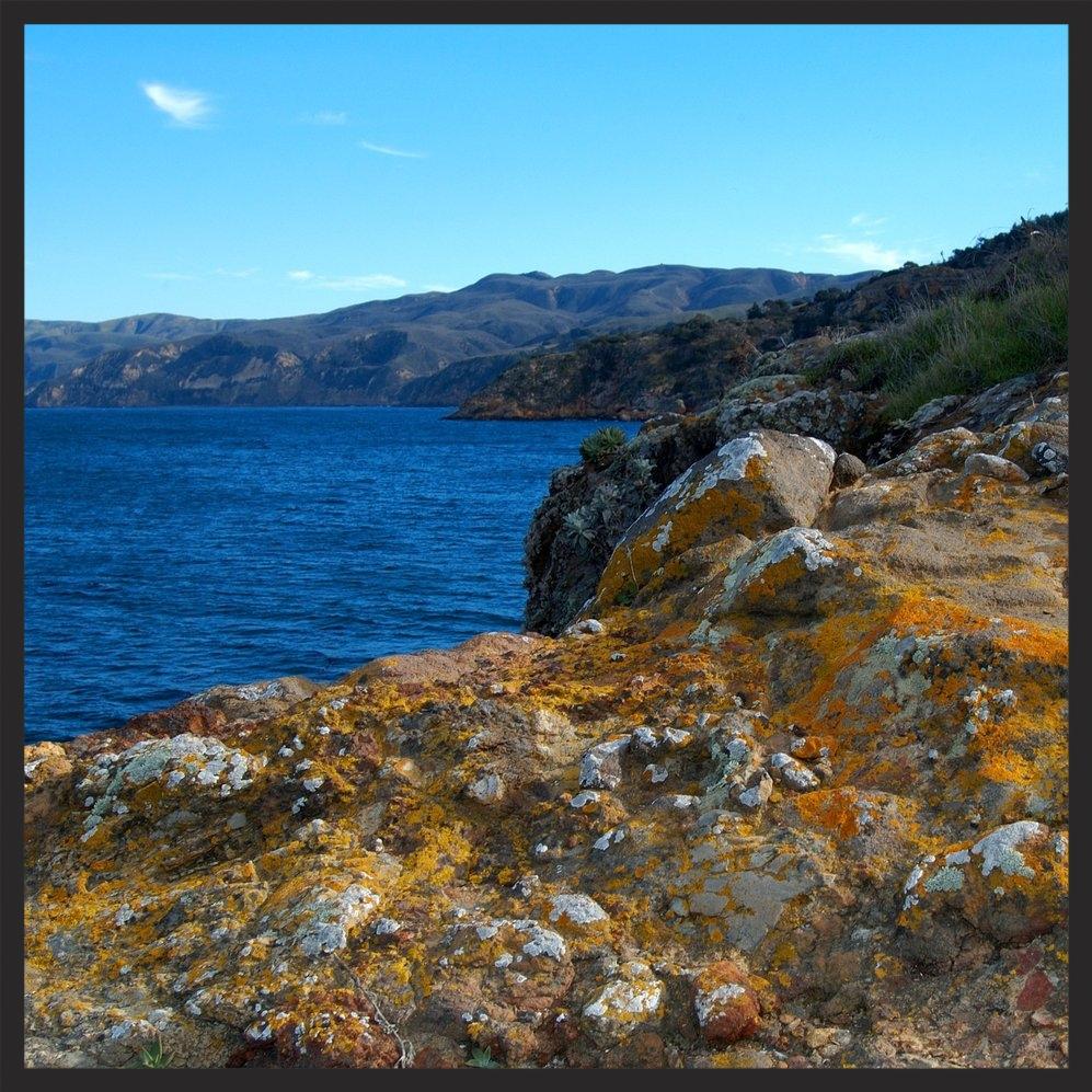 Lichen_encrusted_rocks_adorn_the_cliffs_of_Santa_Cruz_Island.jpg