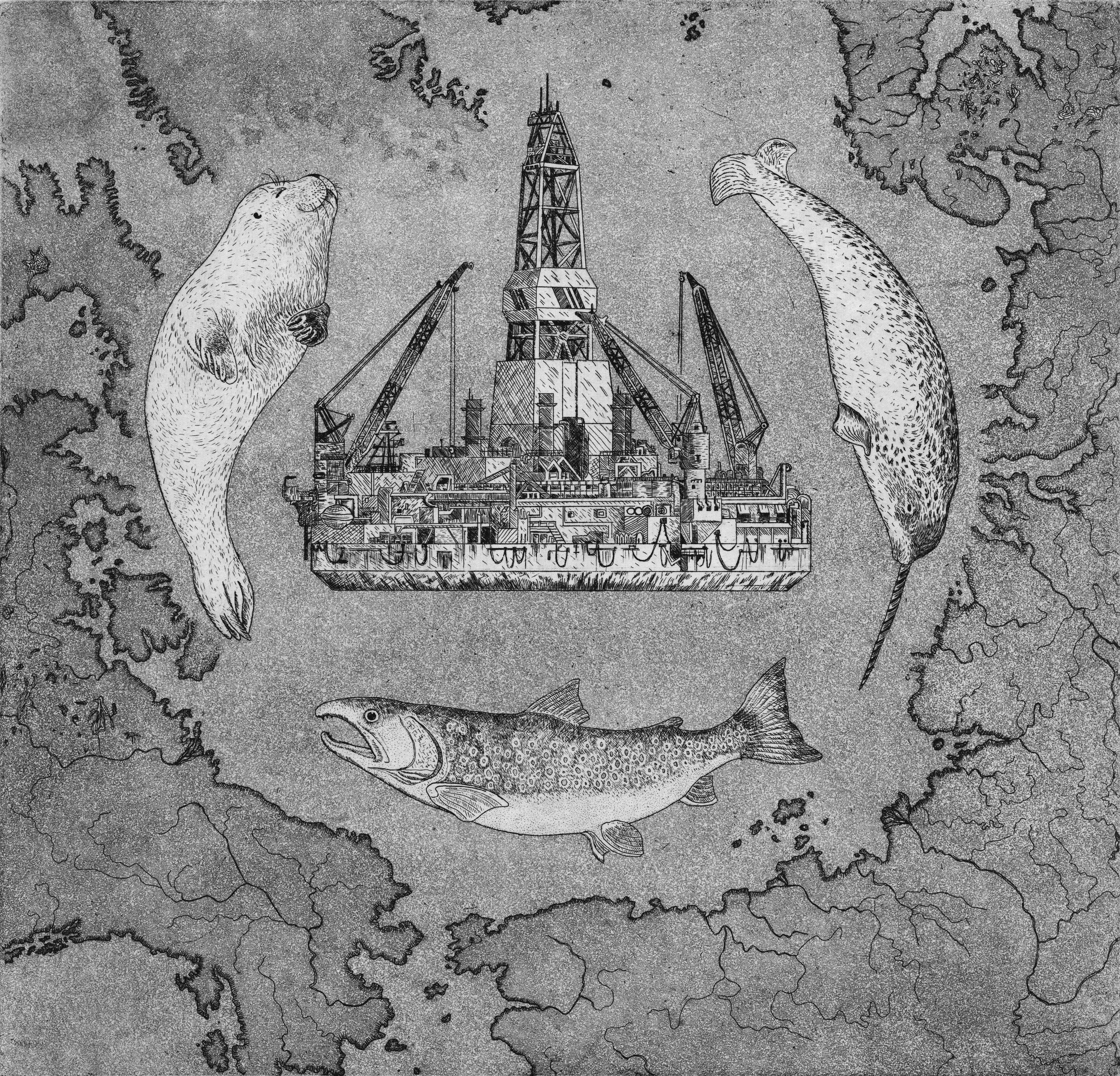 arctic horizons