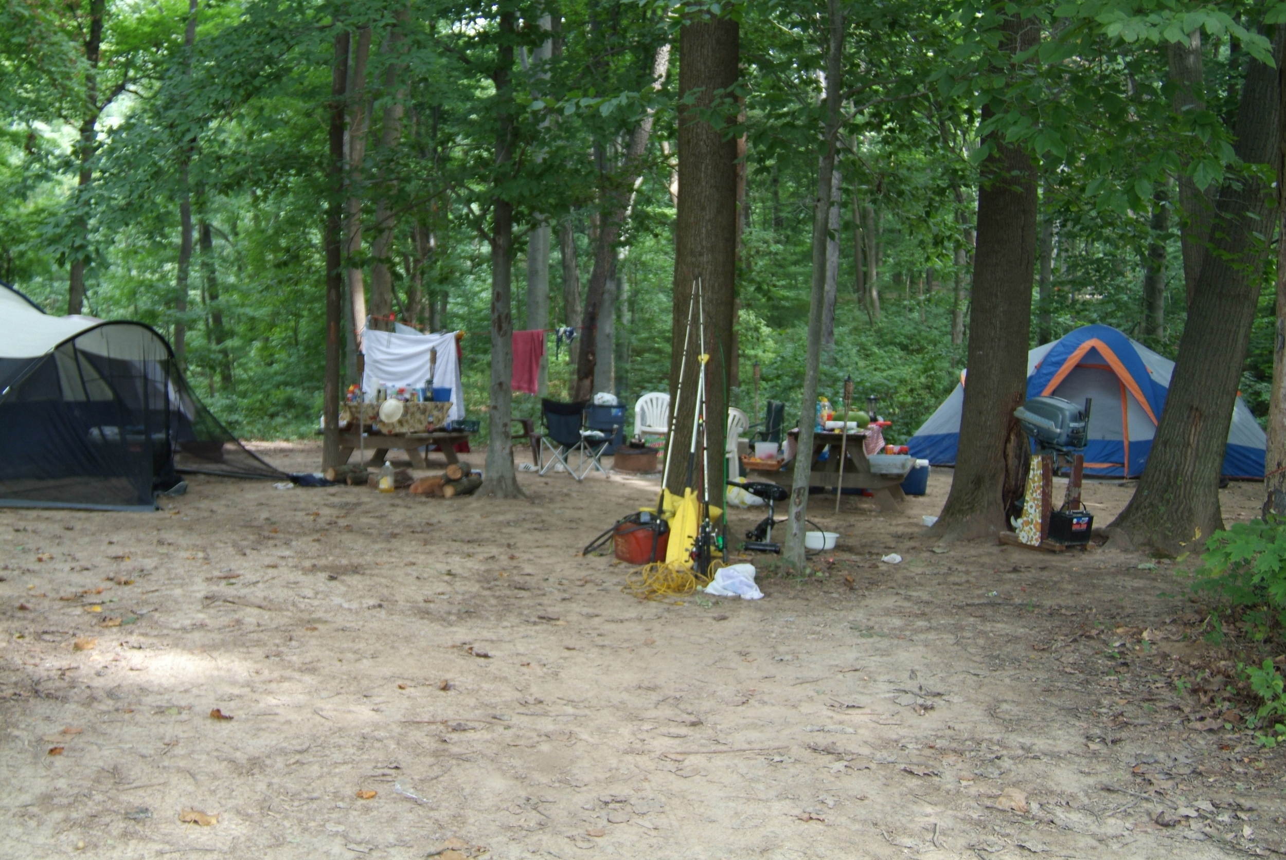 Plenty of space to spread out and set up the perfect camp  !
