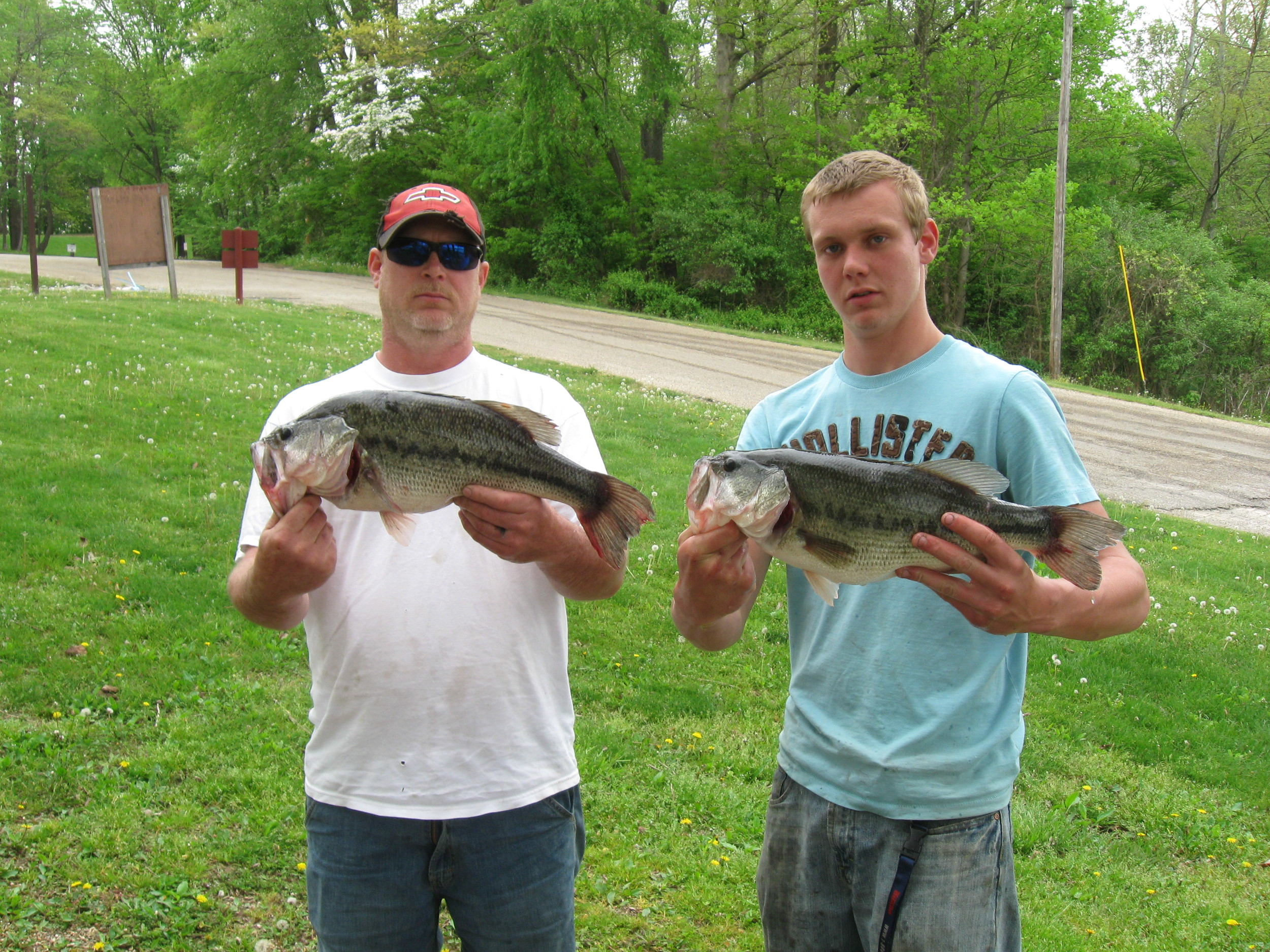 Two of our giant bass! The left fish was over 6lbs and the other over 5lbs! They won the    bass tournamen   t with a five fish catch of over 18lbs!