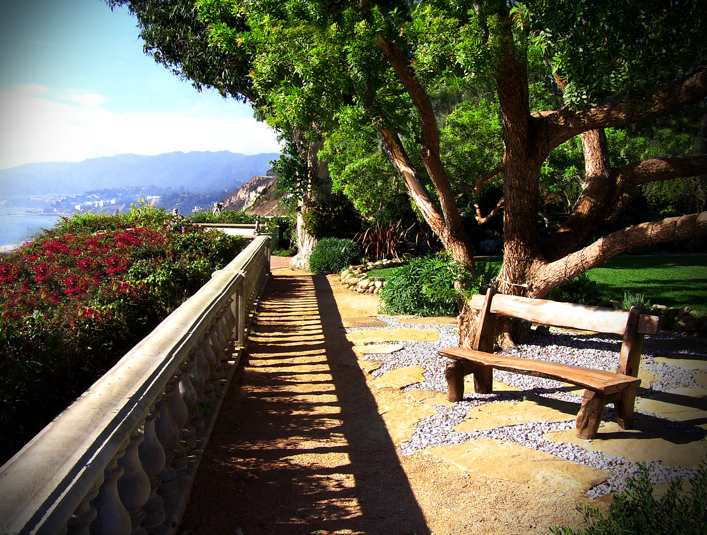 Walkway bench tree-a.jpg