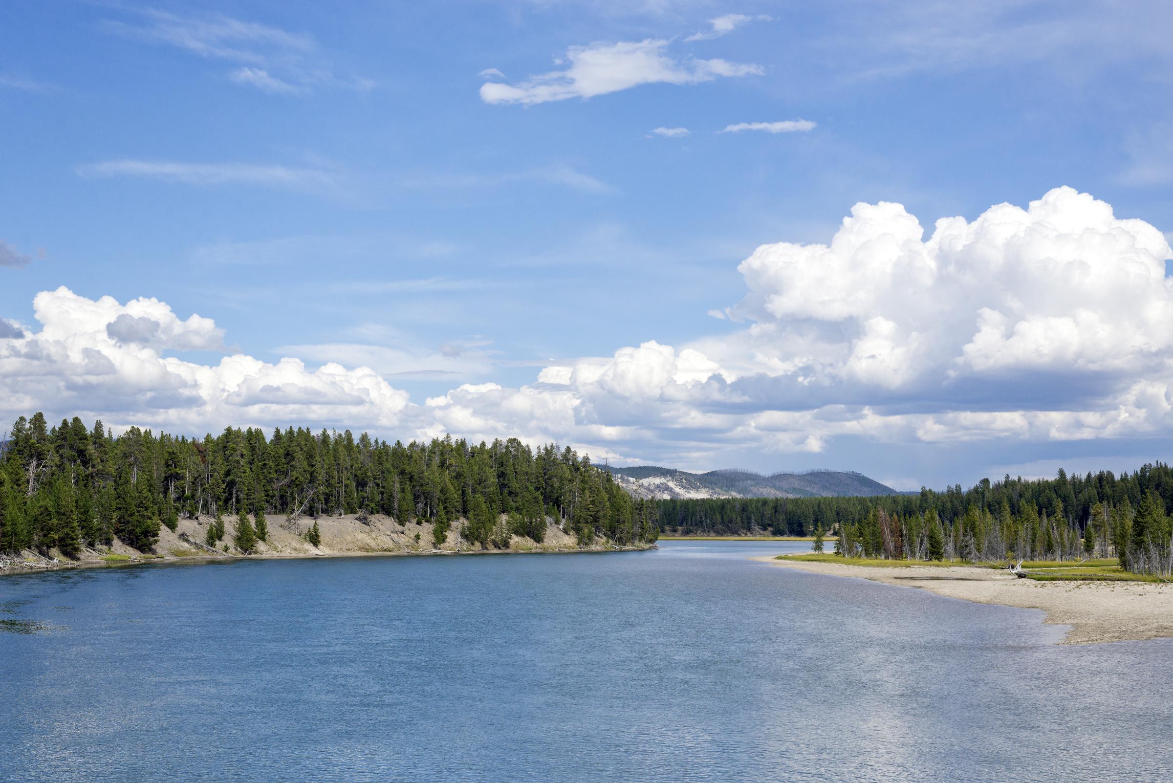 Yellowstone (12)