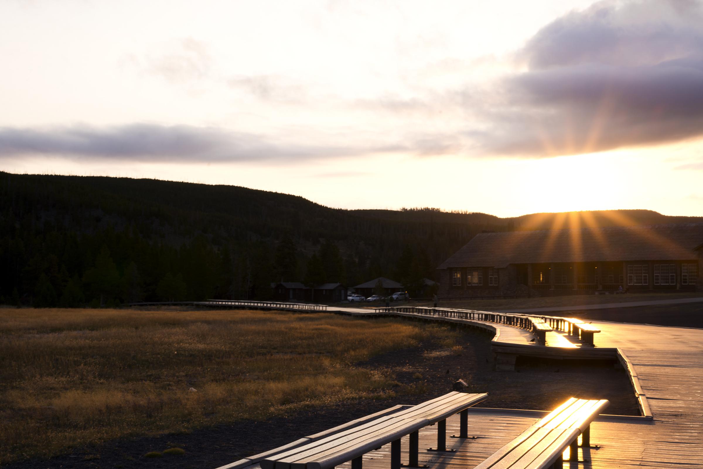 Yellowstone (20)