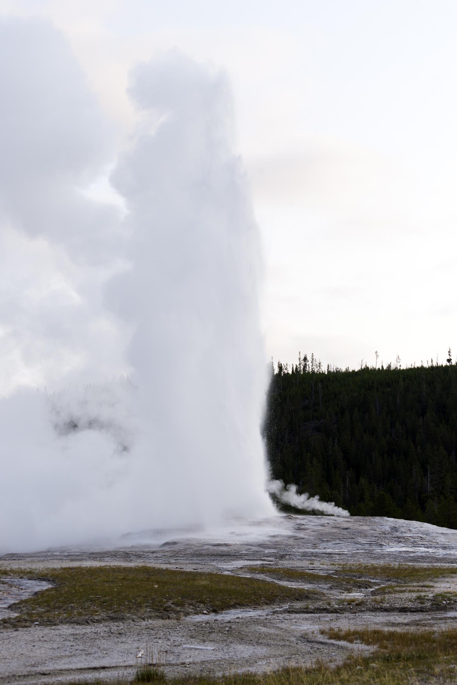 Yellowstone (23)