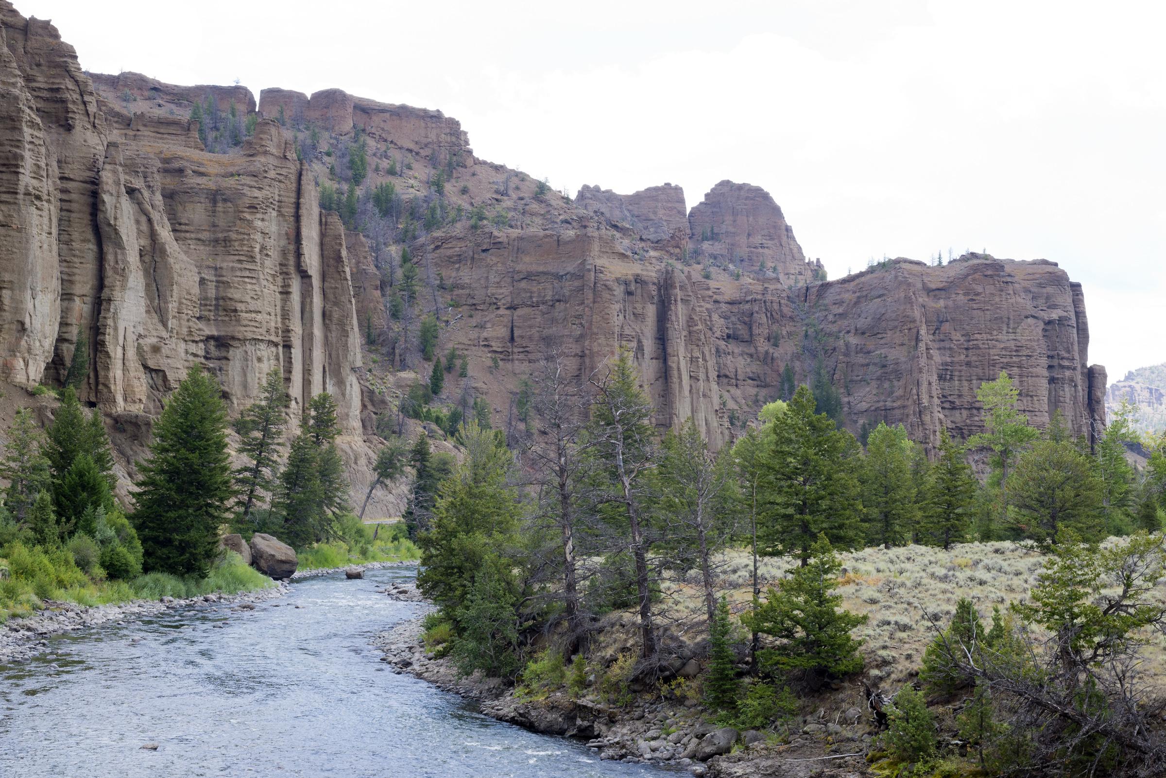 Yellowstone (9)