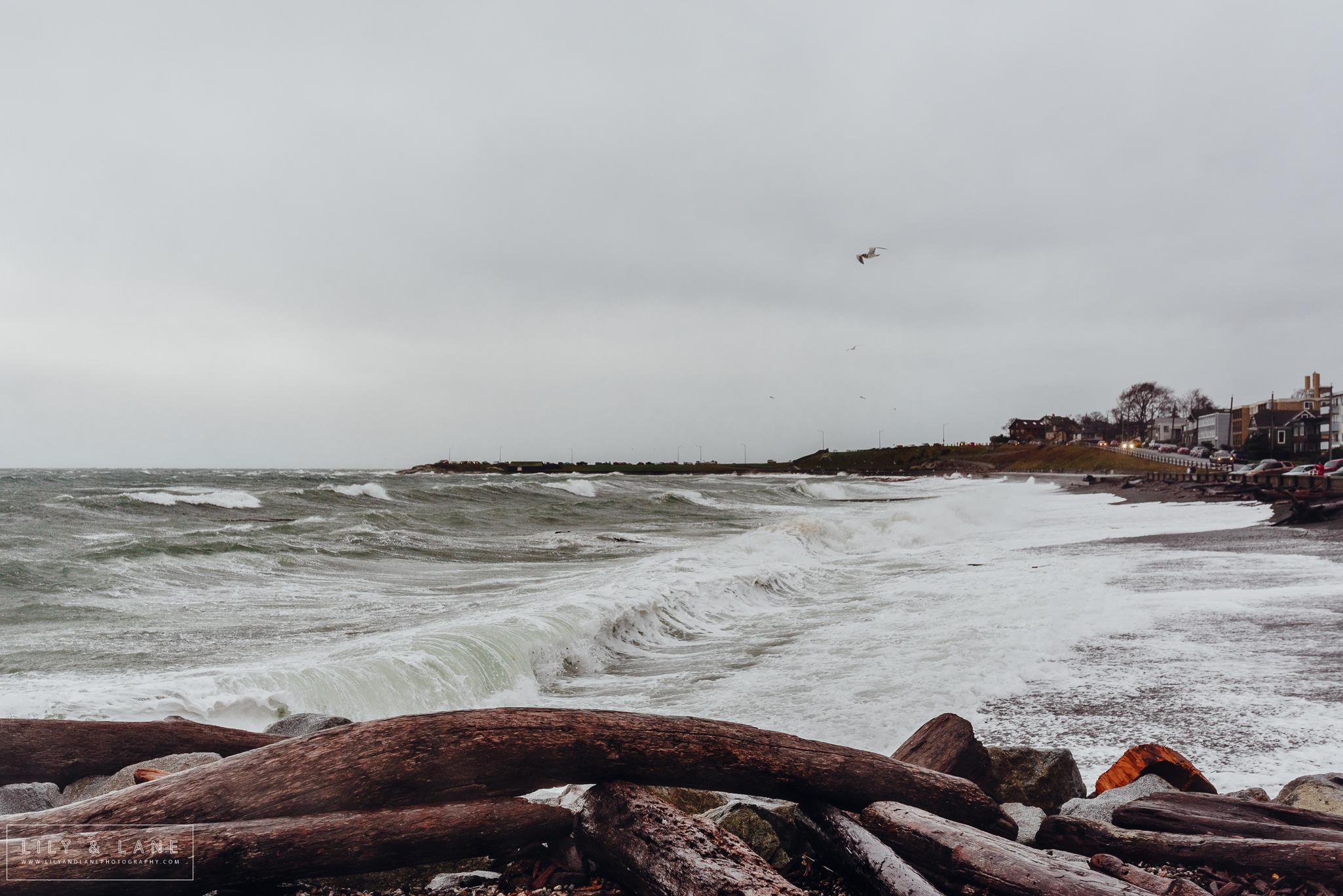 Nicola_Reiersen_Photography_Victoria_BC_Winter_Storm.jpg