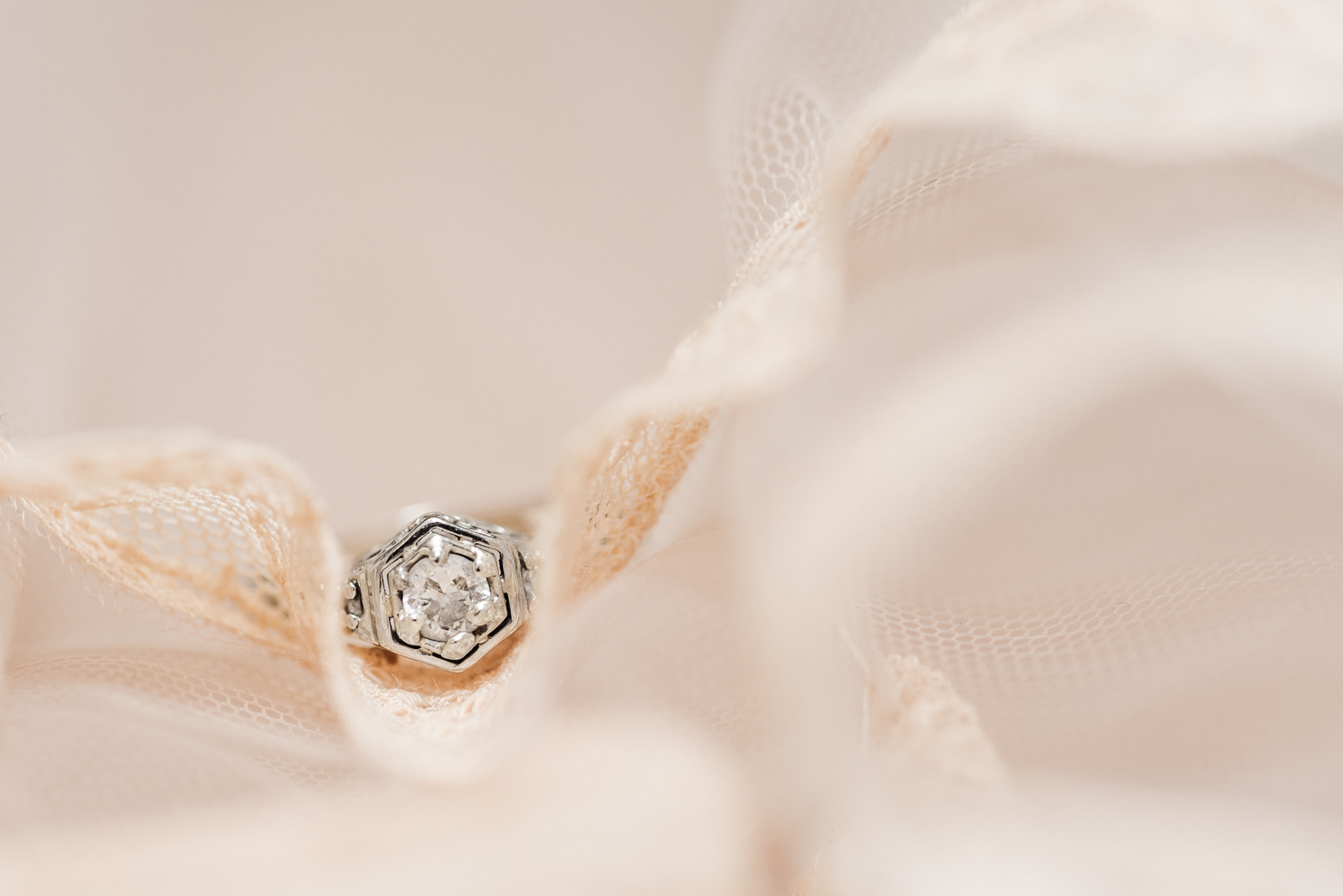 Nicola_Reiersen_Photography_Sea_Cider_Forest_Wedding (29).jpg