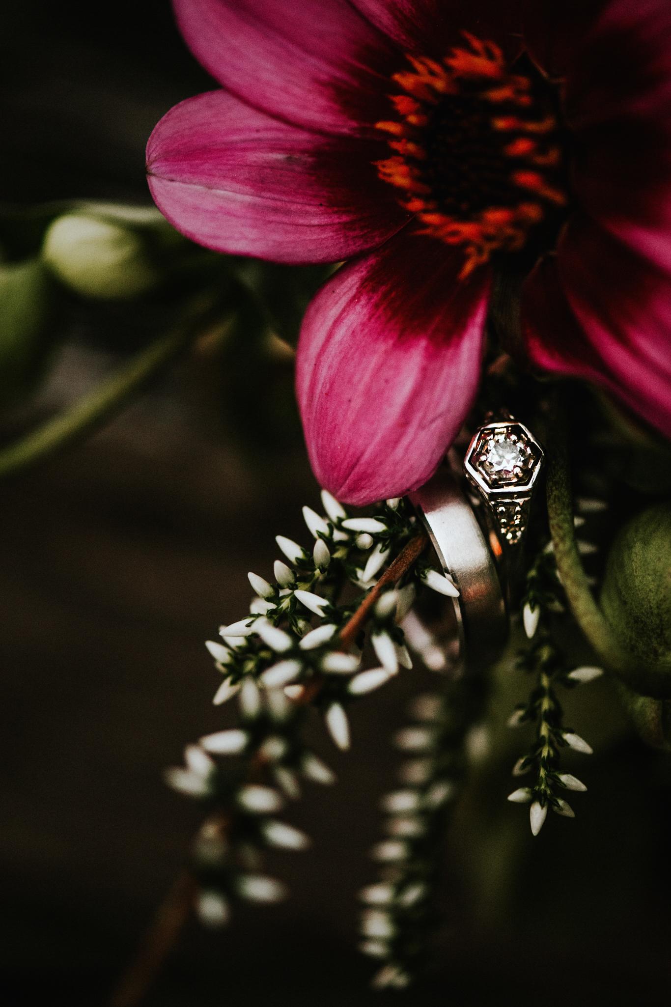 Nicola_Reiersen_Photography_Sea_Cider_Forest_Wedding (132).jpg