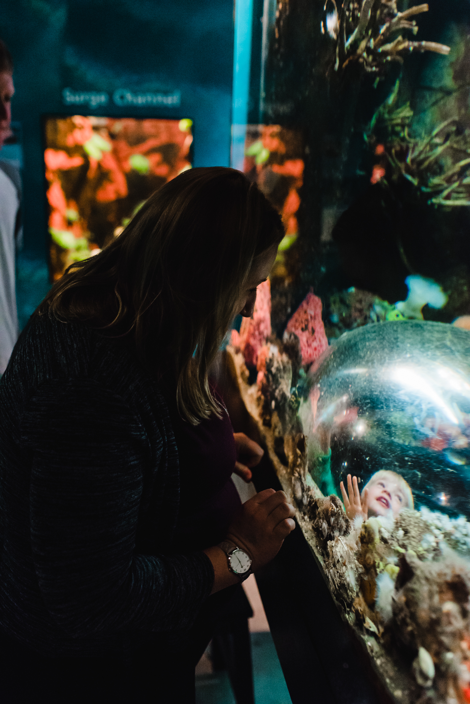 Nicola_Reiersen_Photography_Victoria_BC_Aquarium_Maternity_Session (62).jpg