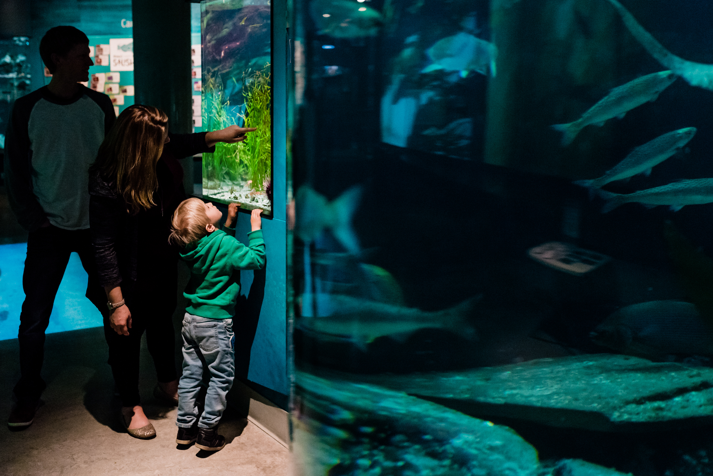 Nicola_Reiersen_Photography_Victoria_BC_Aquarium_Maternity_Session (80).jpg
