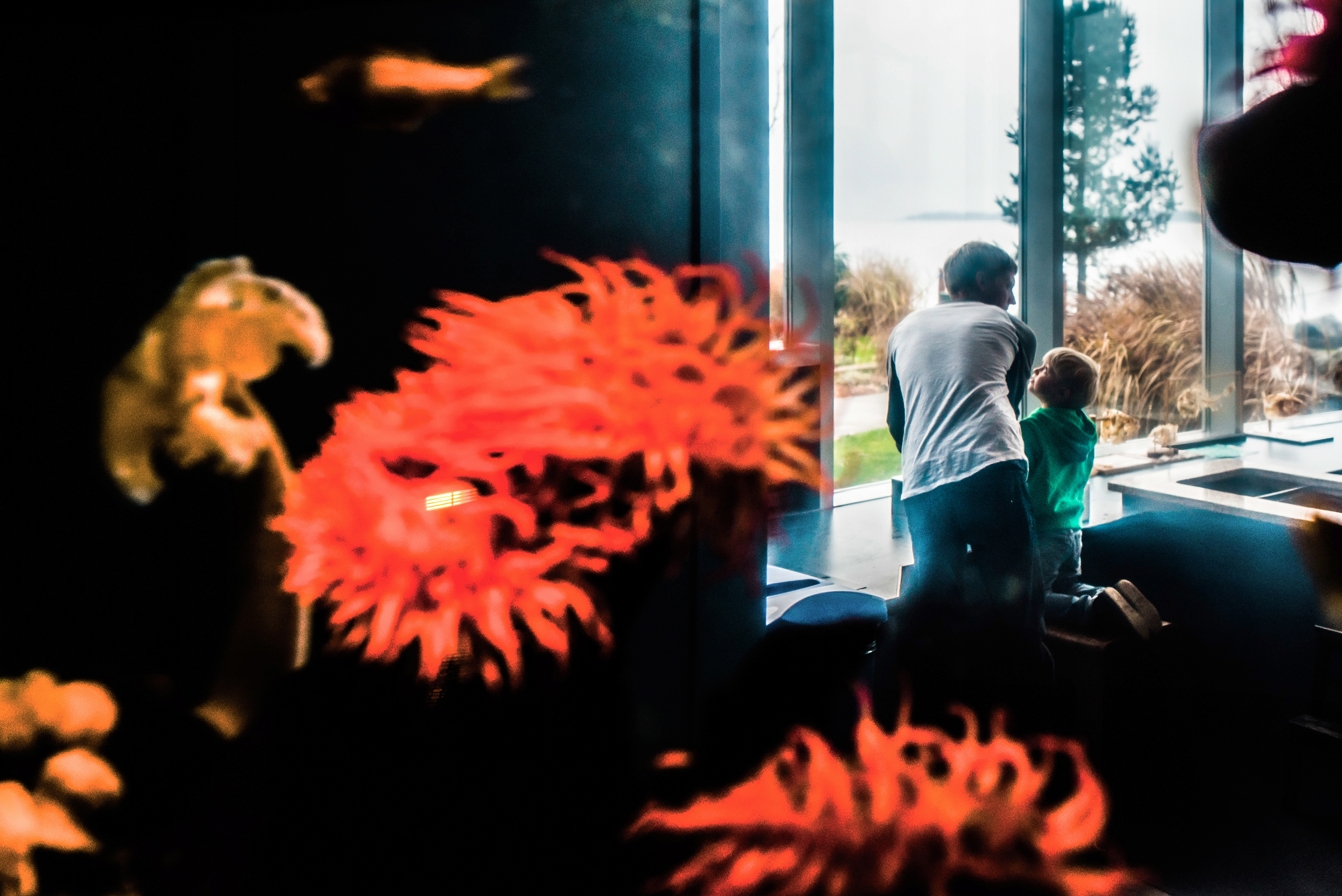 Nicola_Reiersen_Photography_Victoria_BC_Aquarium_Maternity_Session (126b).jpg