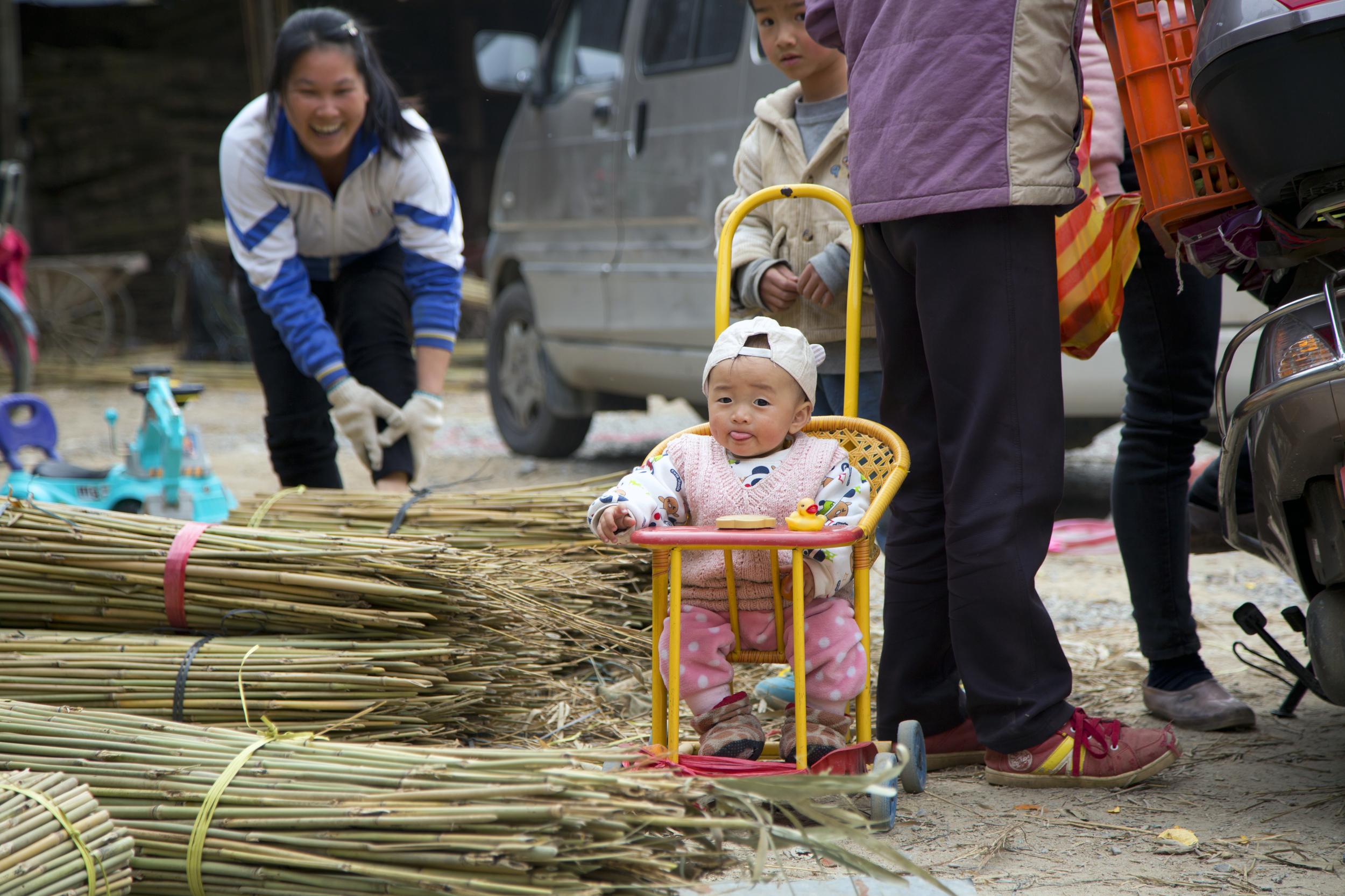 baby_bamboo.jpg