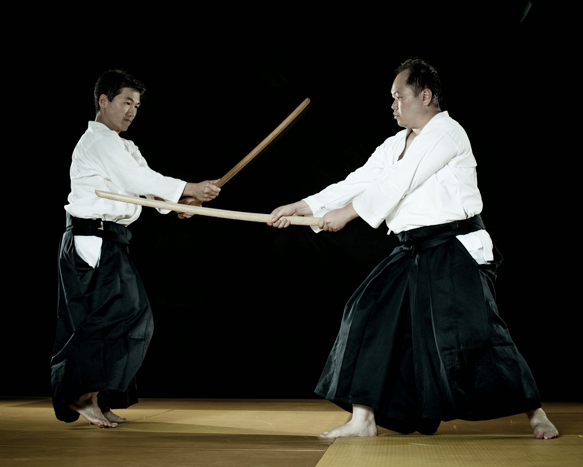 Aikido_Mar_2014-3678.jpg
