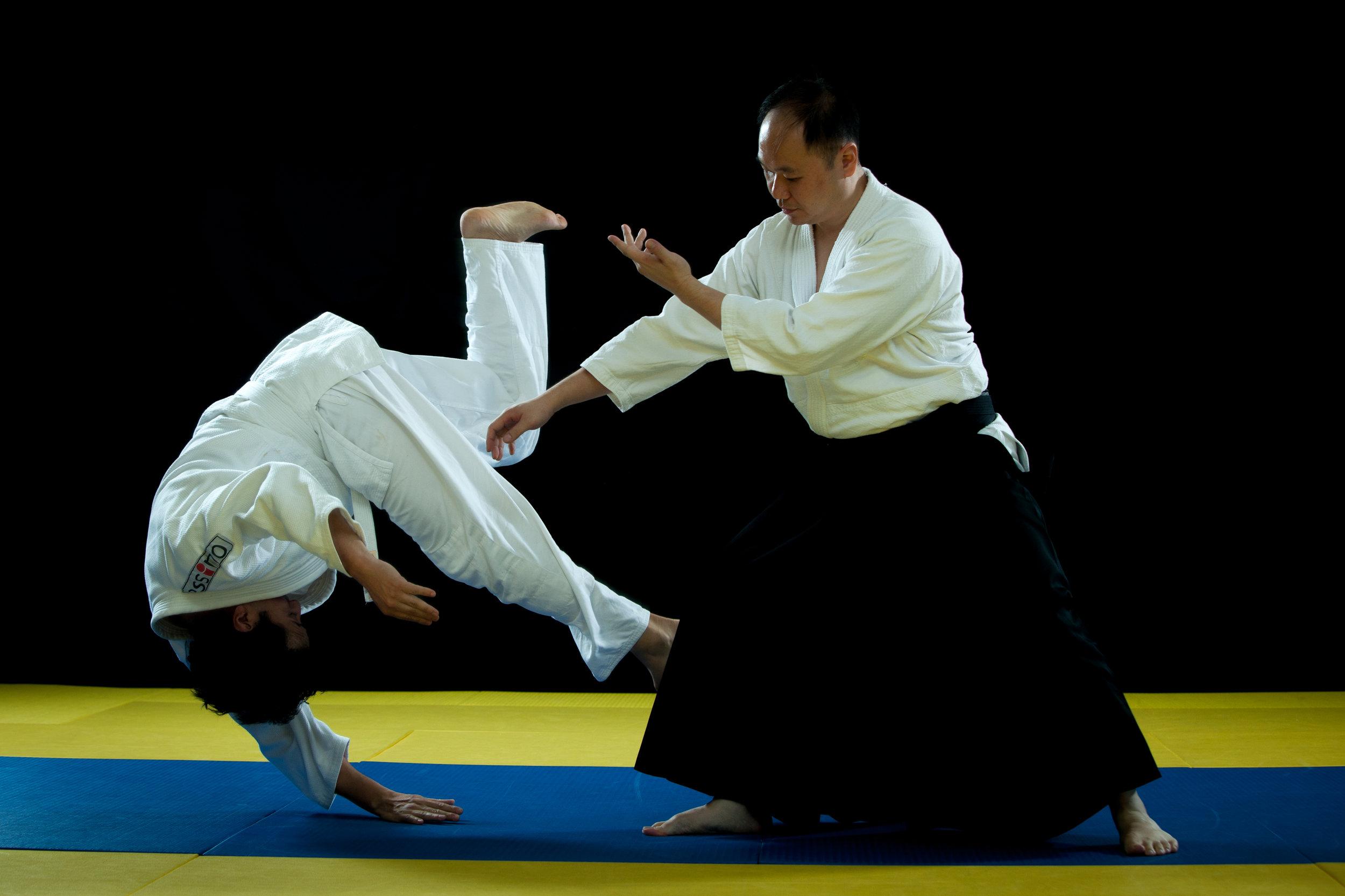 aikido-4.jpg