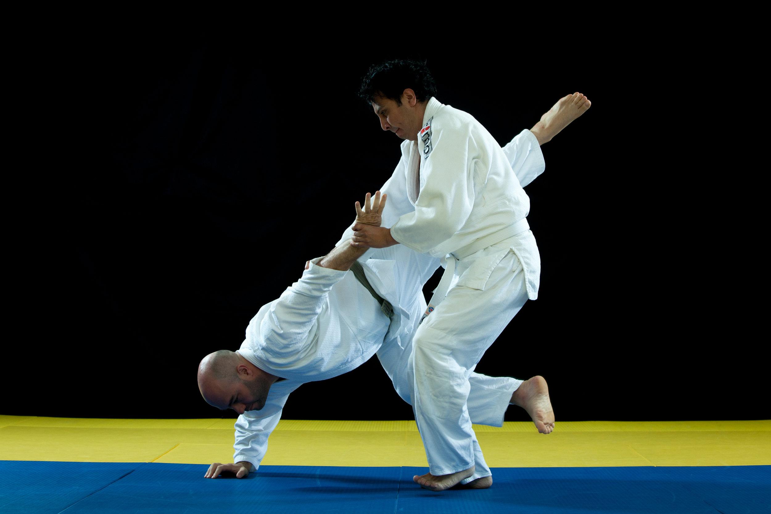 aikido-10.jpg
