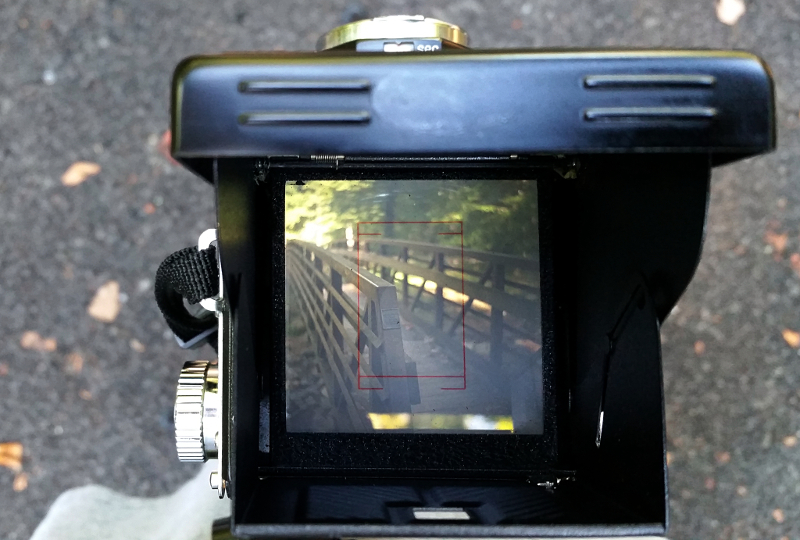Looking through the waist-level viewfinder of a typical TLR.