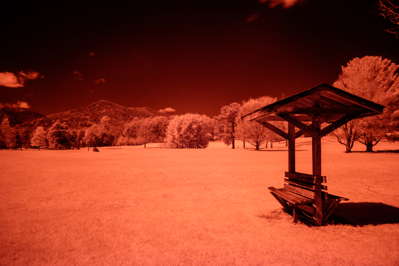 Color version of an infrared photo I took using my Fujifilm X-E2 and IR760 filter. I selected the Camera PROVIA/ Standard profile in Lightroom.