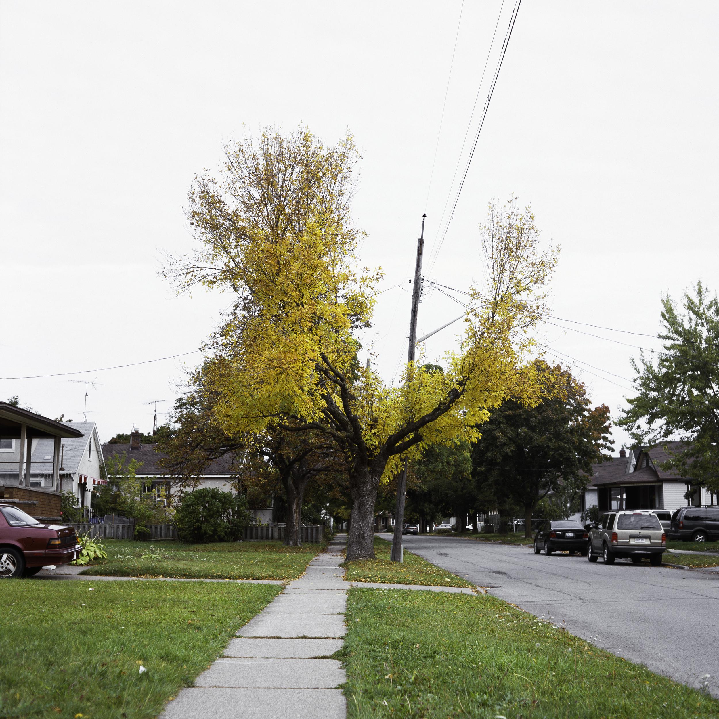 Augusta St., 2010