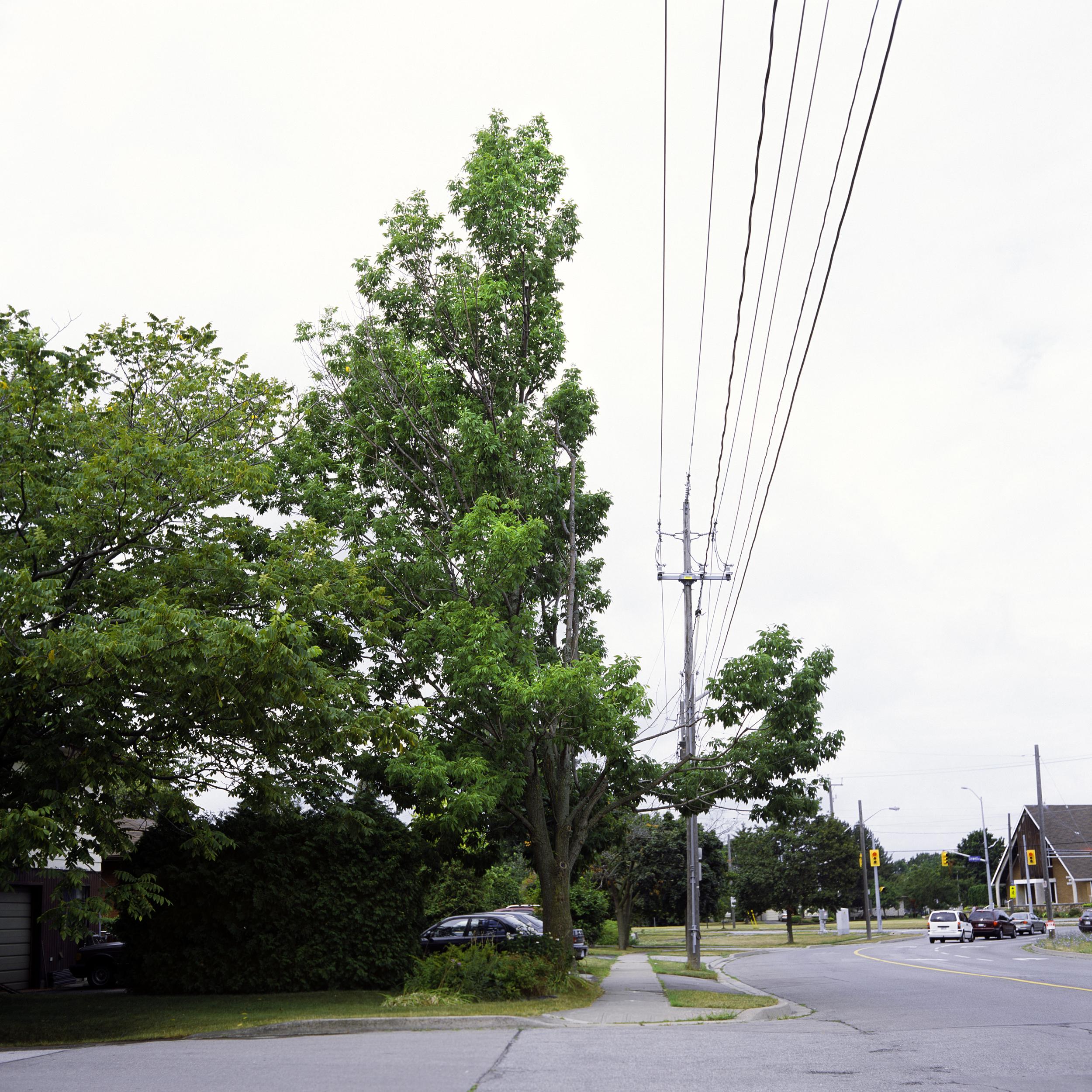 Linwell Rd., 2013