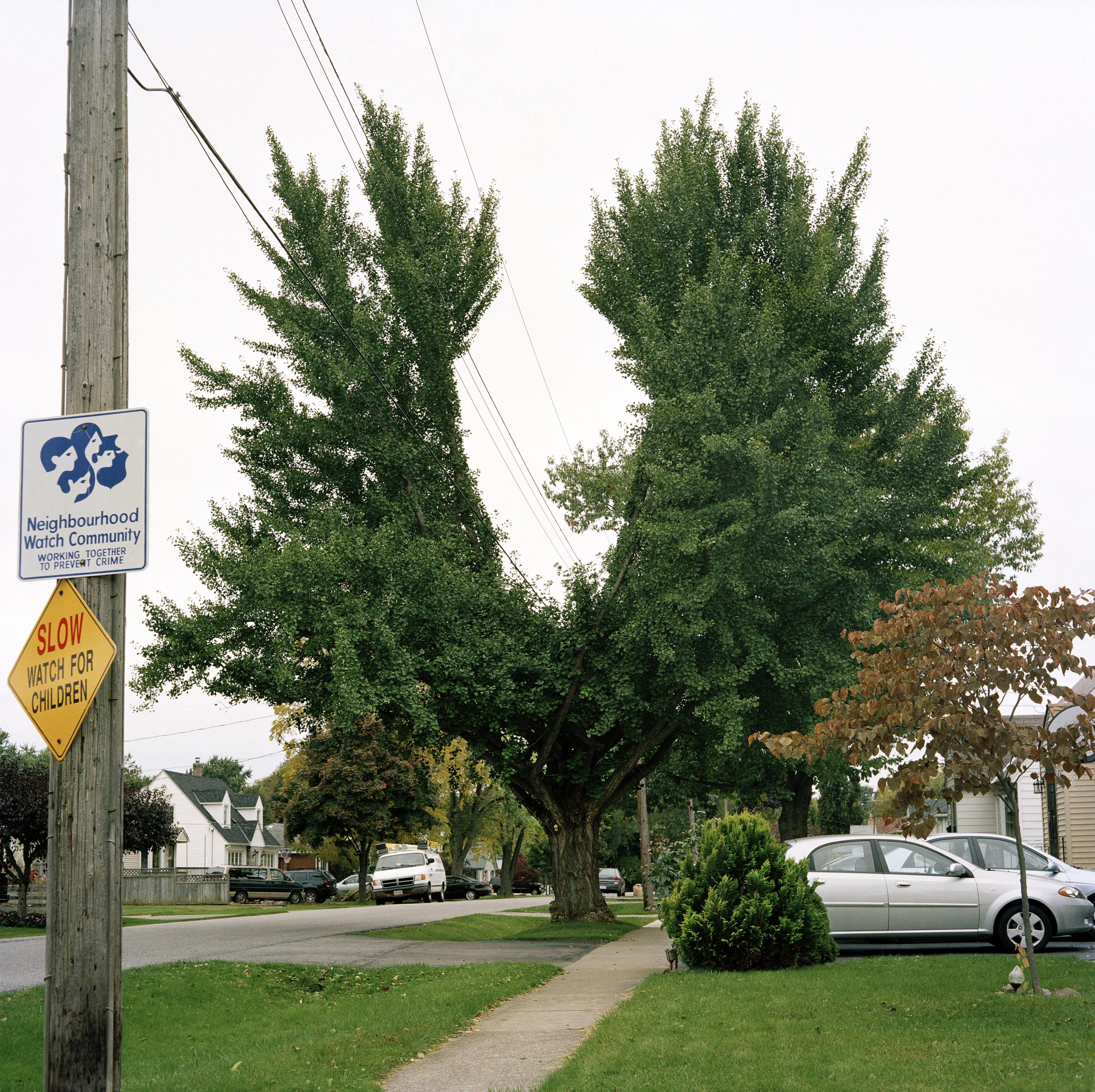 Tecumseh St., 2010