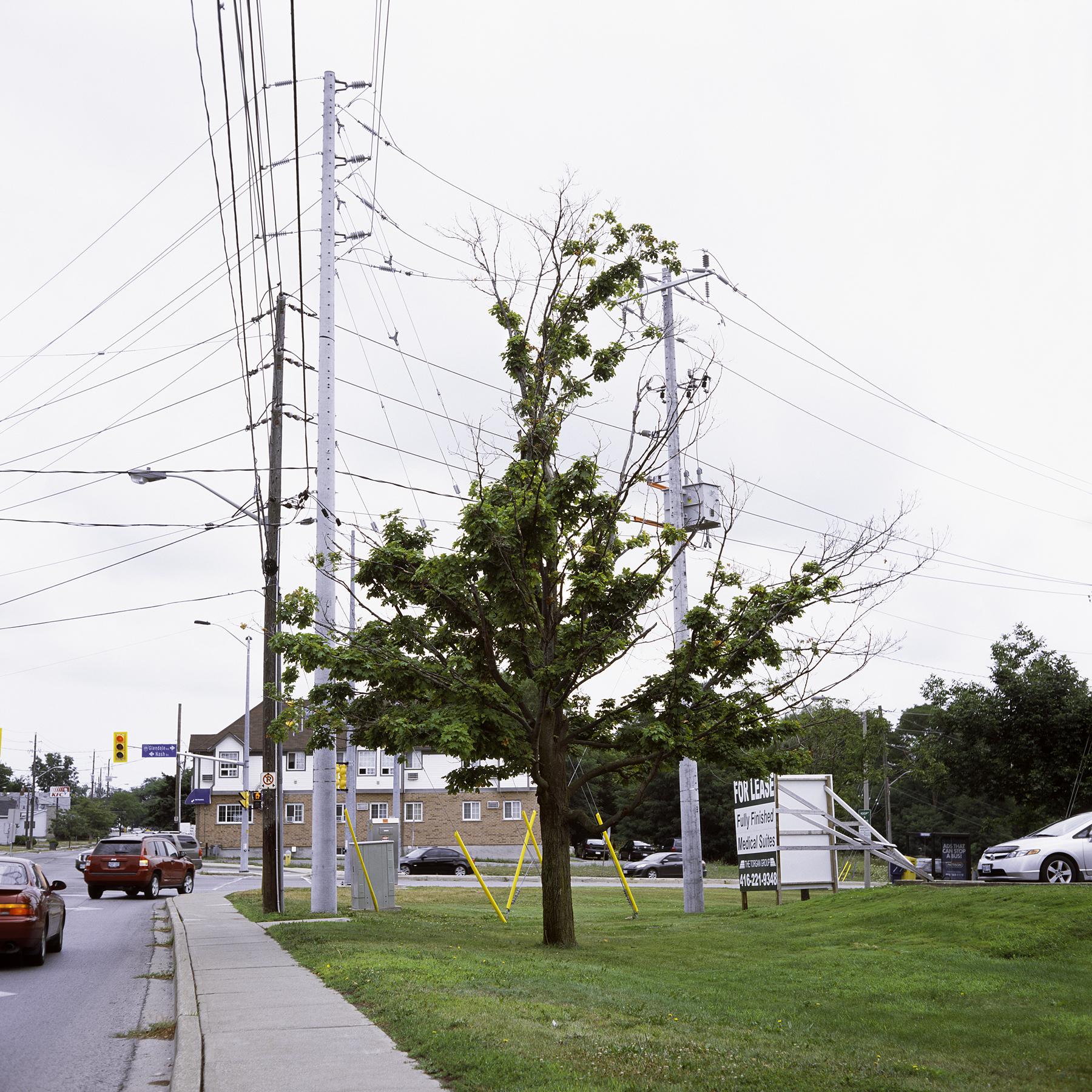 Pelham Rd., 2013