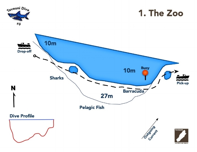 Dive Map for the Zoo Dive Site    | Return to Dive Sites