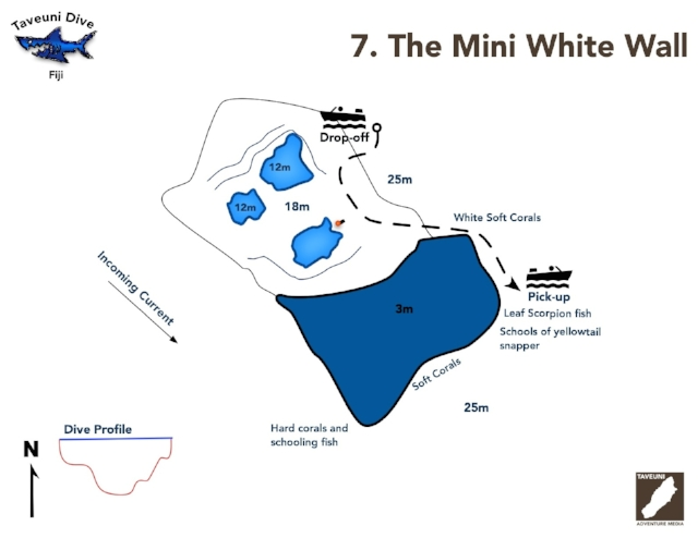 Dive Map for the Mini White Wall      Return to Dive Sites
