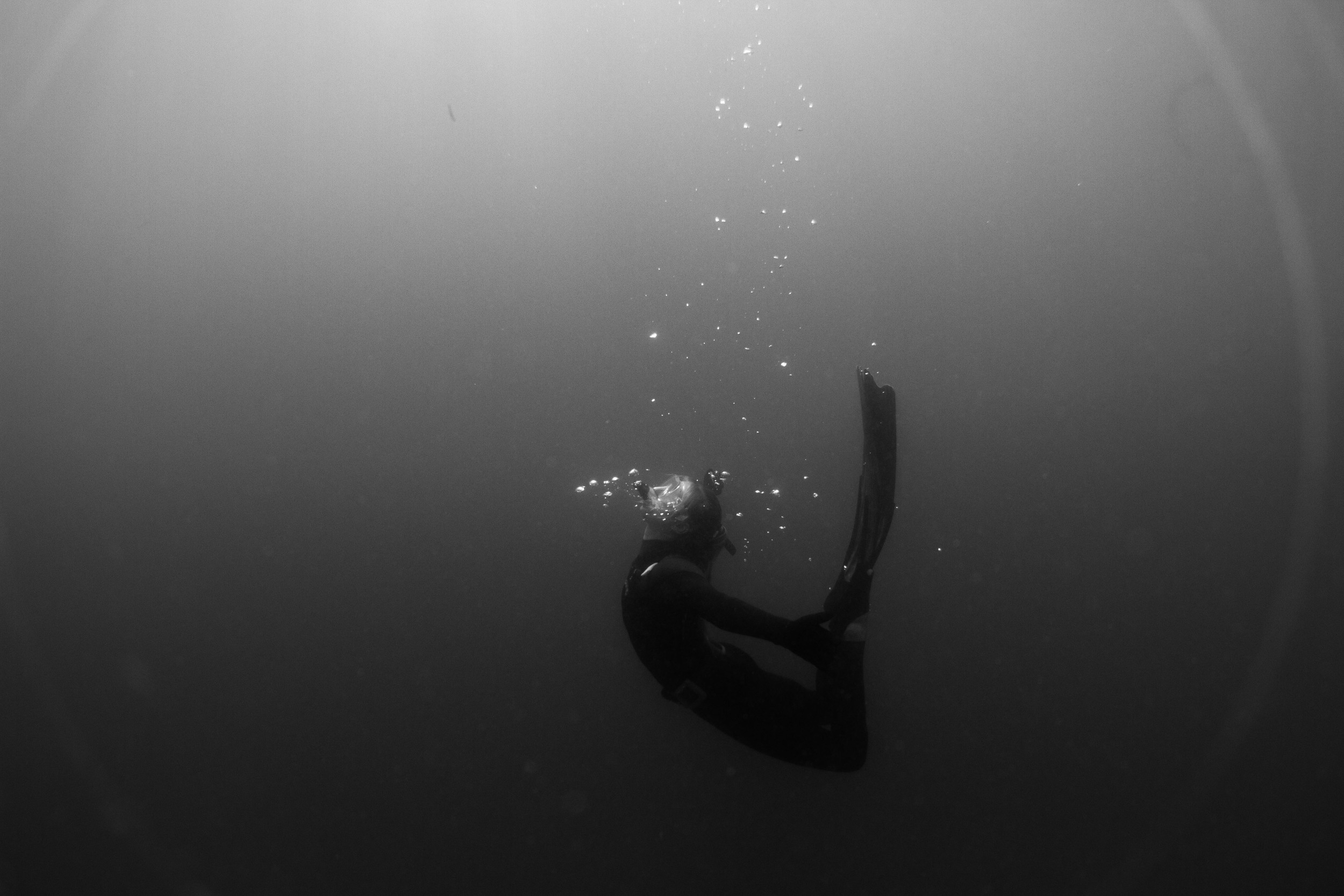Freediving-7.jpg