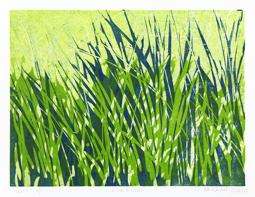 Rice Fields III