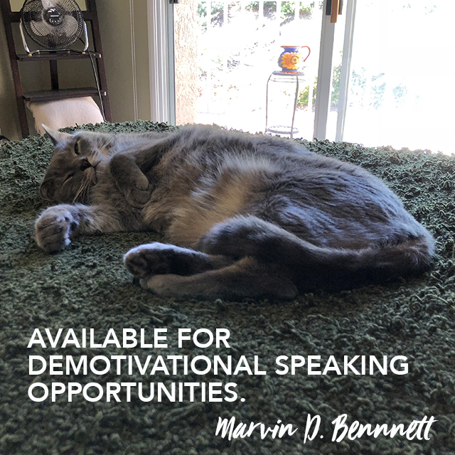 marvin thought leadership 111318.jpg