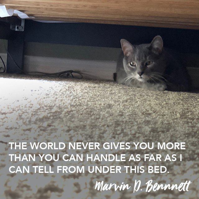 marvin thought leadership 110618.jpg