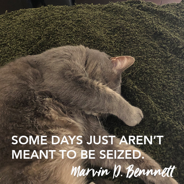 marvin thought leadership 031419v2.jpg
