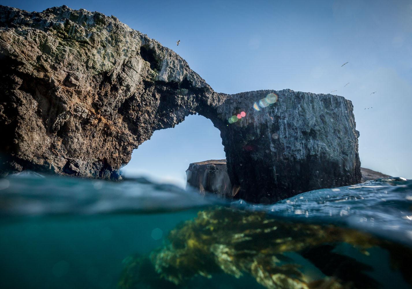 underwater_0001.jpg