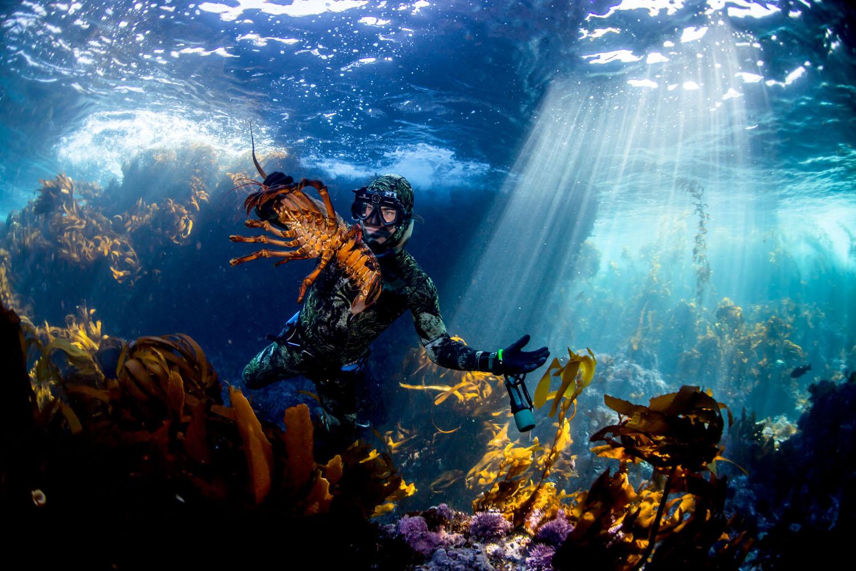 underwater_0011.jpg