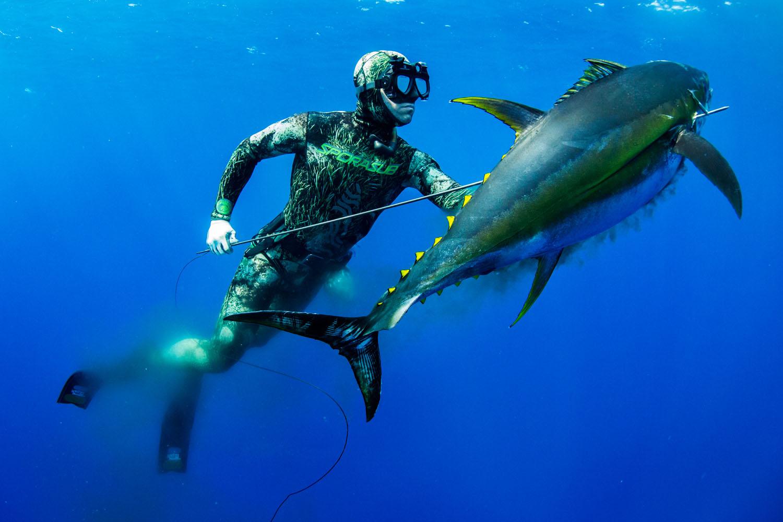 underwater_0033.jpg