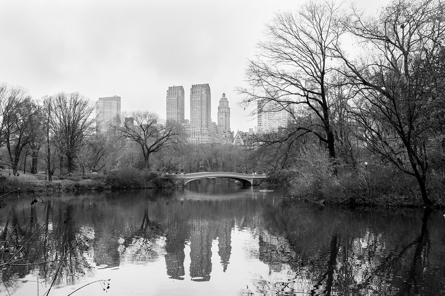 New York Central Park Wedding_ 001.jpg