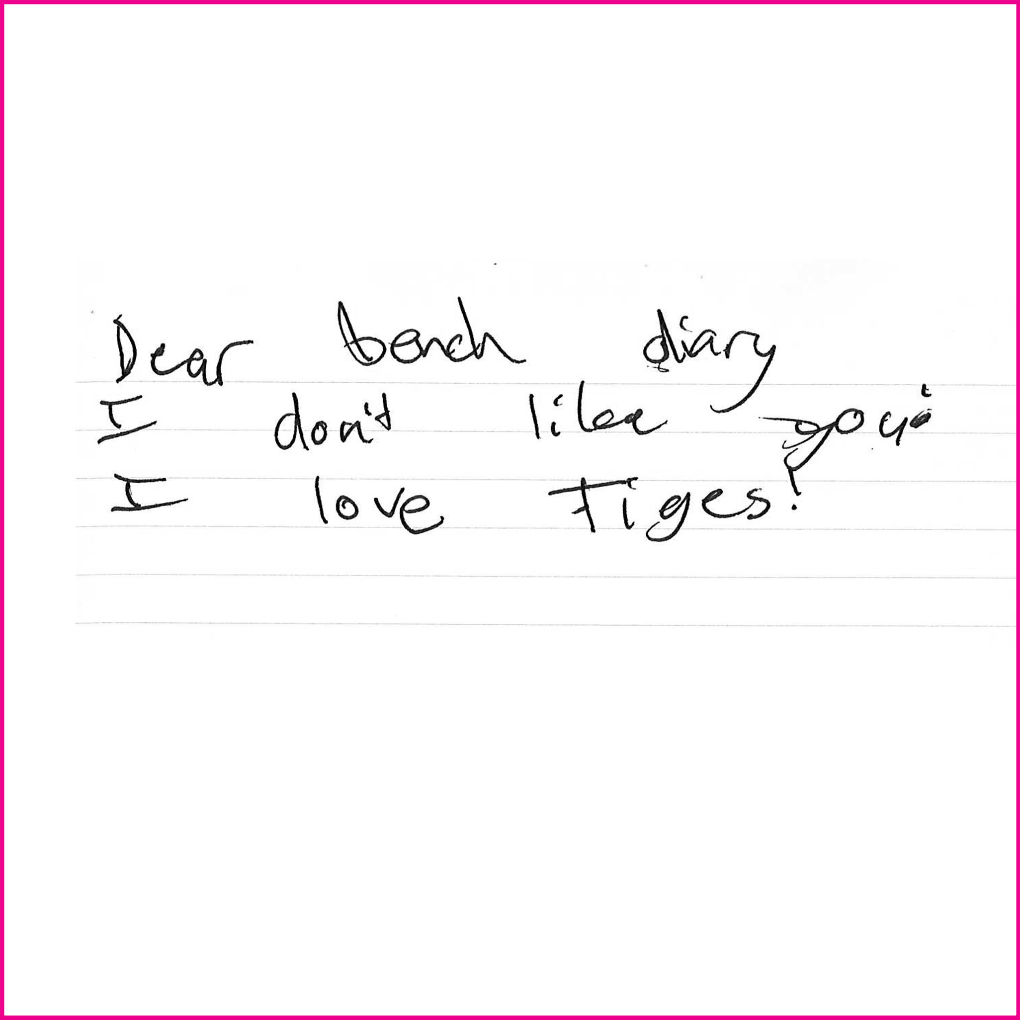 Dear bench diary  I don't like you  I love Tiges!