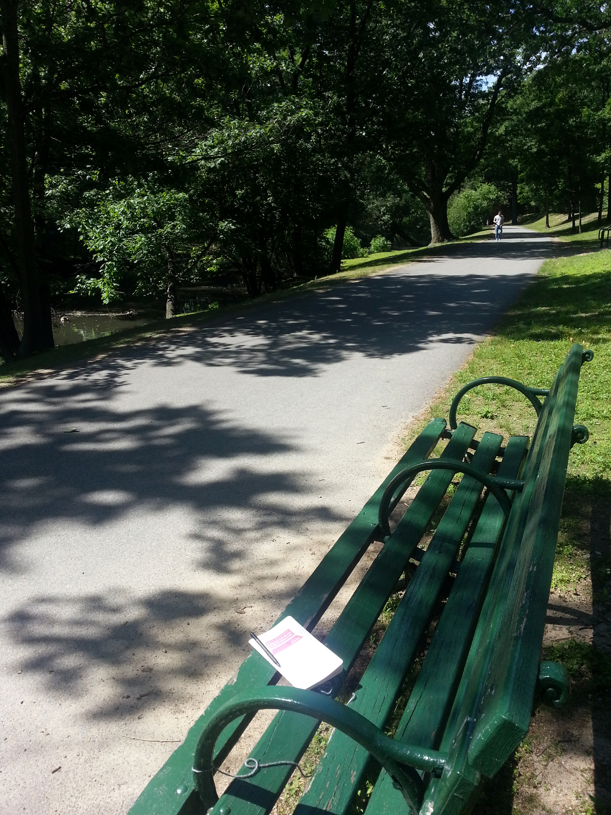 BenchDiaryBoston (Riverway) - 6-15-2014.jpg