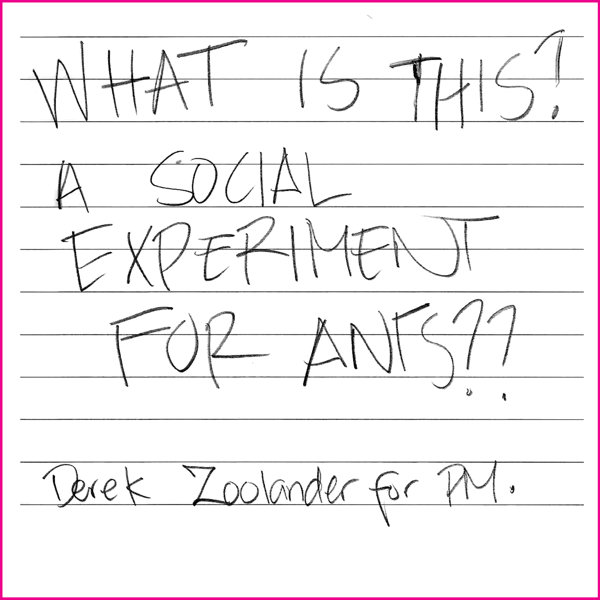 WHAT IS THIS? A SOCIAL EXPERIMENT FOR ANTS?  Derek Zoolander for PM.