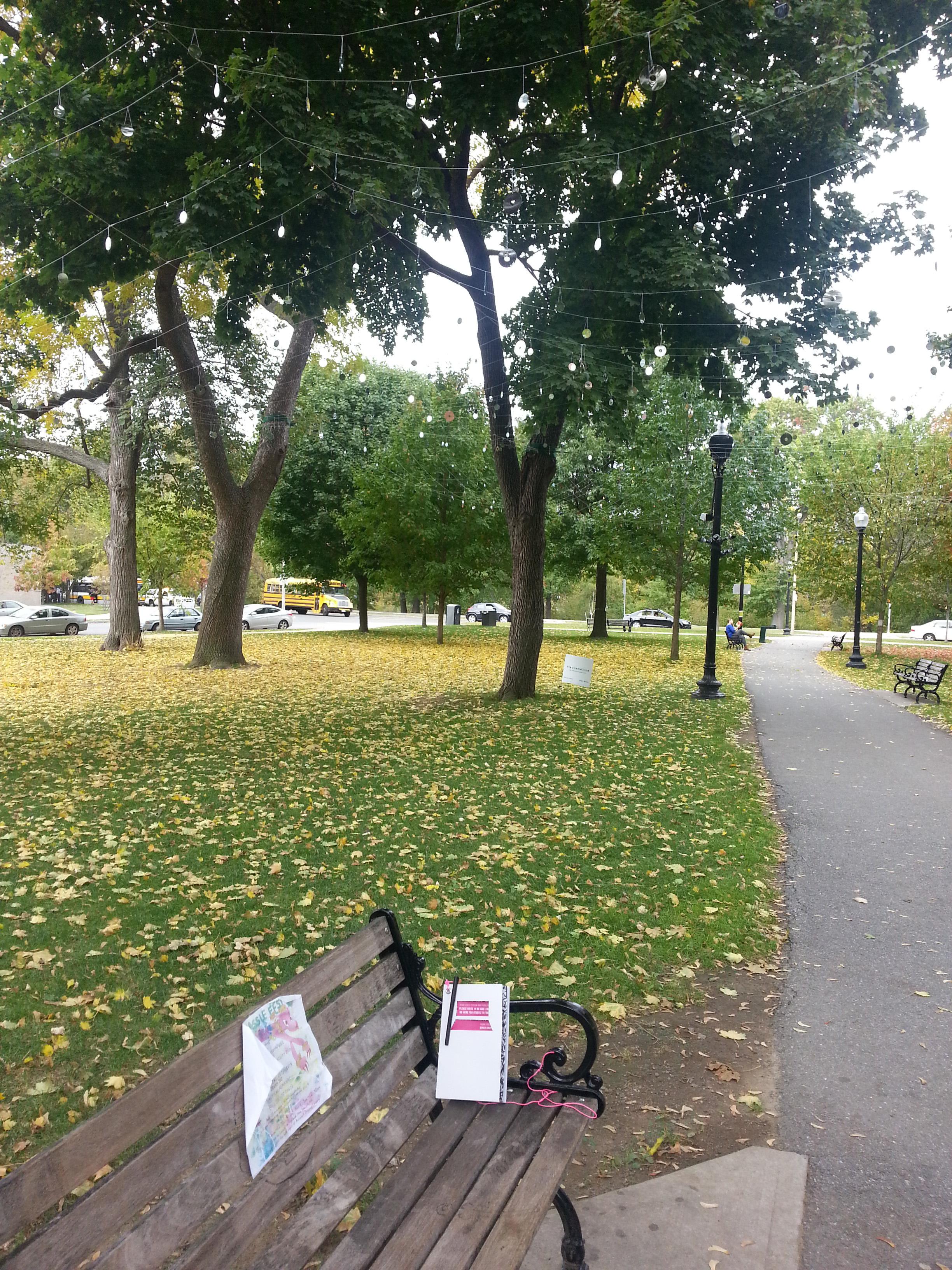 BOSBenchDiary - Evans Way Park (1).jpg