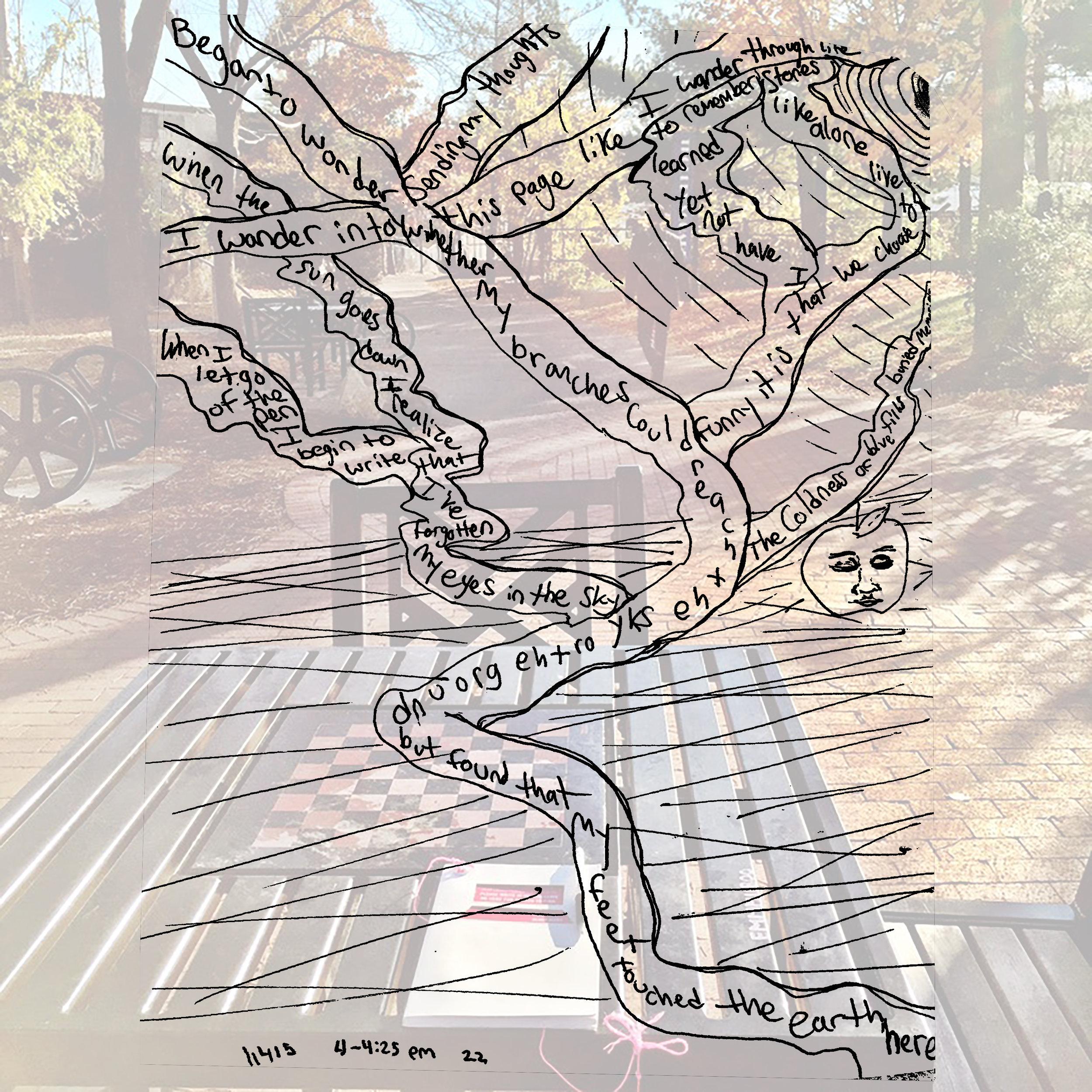 151104_Somerville Bike Path 2.jpg