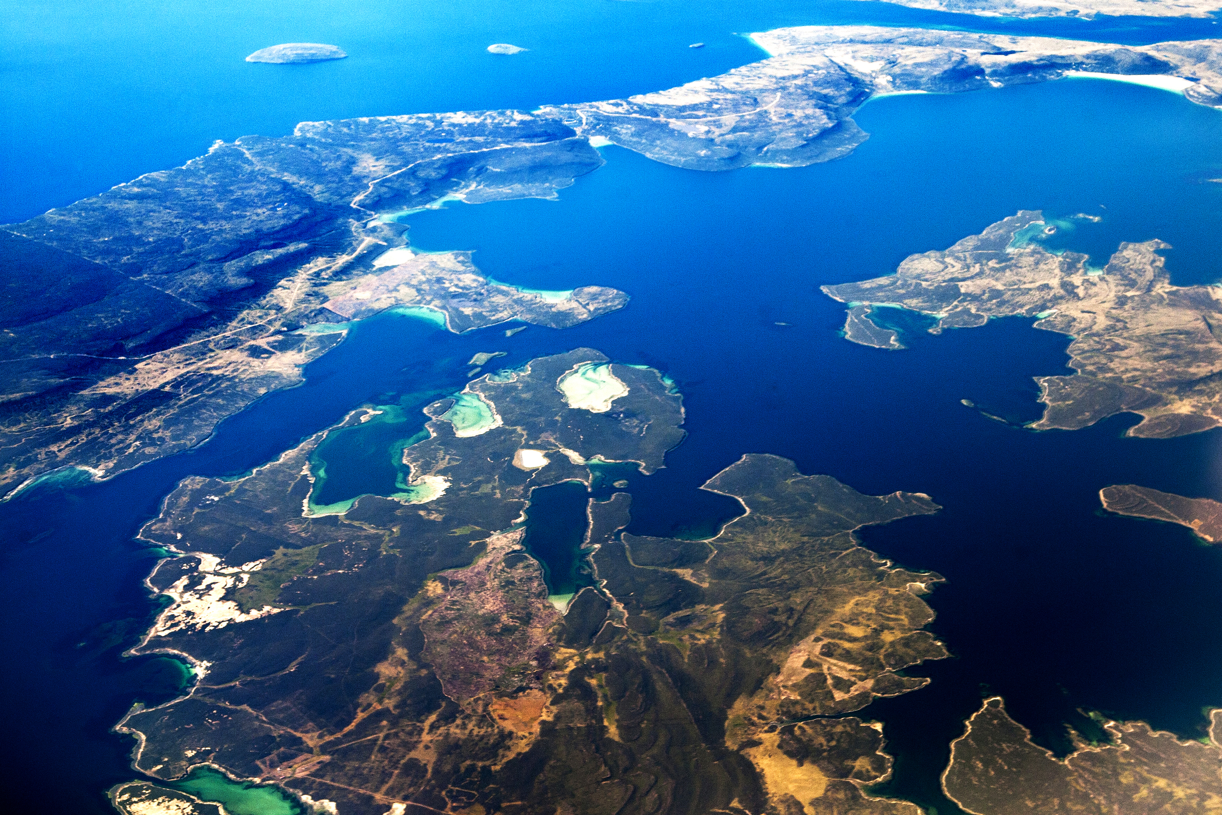 A natureza e a vida selvagem nas Ilhas Malvinas, para os argentinos, ou Falklands, para os britânicos